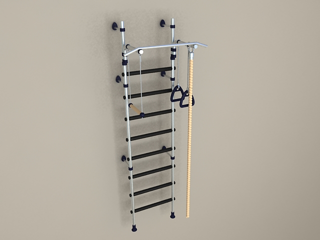 Gym Exercise Wall Ladder 3d model