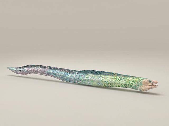 Muraenesox fish 3d model