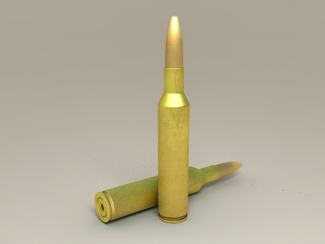 Rifle Bullets 3d model