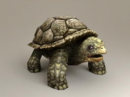 Large Sea Turtle 3d model