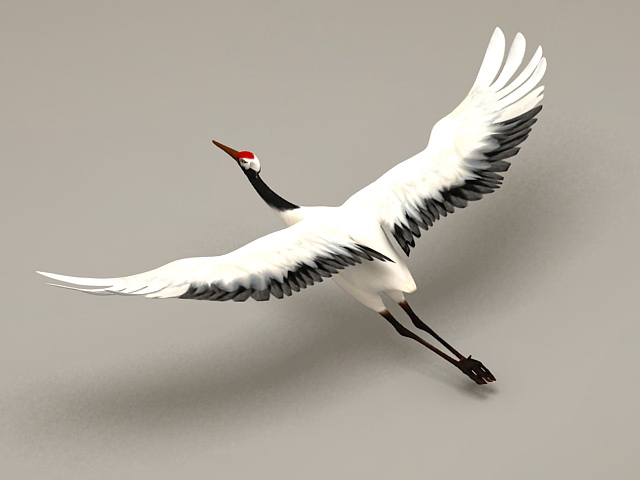 Crane Bird Flying Rigged 3d model