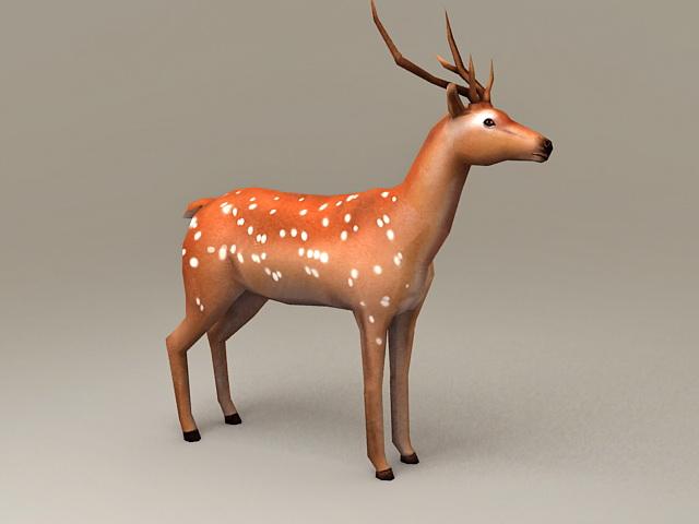Chital Deer 3d model