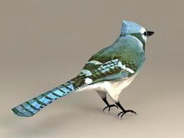 Tree Swallow Bird 3d model