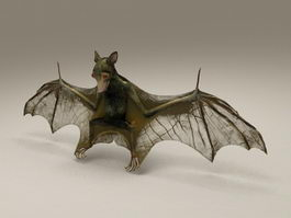 Bat Animal 3d preview