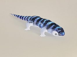 Blue & Black Lizard 3d model
