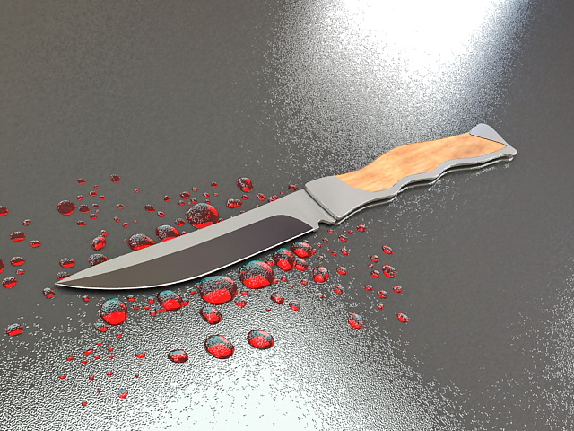Knife with Blood 3d model