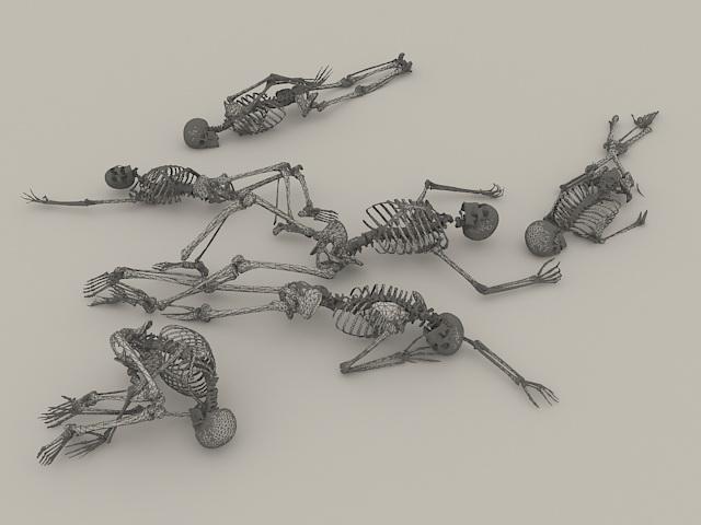 Human Skeletons 3d Model 3d Studio 3ds Max Object Files