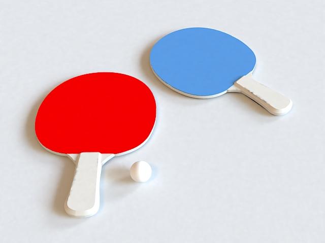 Ping Pong Paddles 3d model