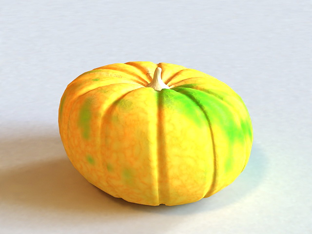 Pumpkin Vegetable 3d model