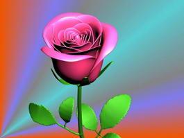 Red Rose Flower 3d model