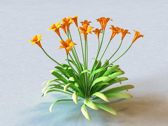 Canna Flowering Plant 3d model