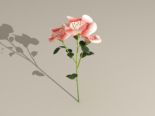 Flowering Branch 3d model