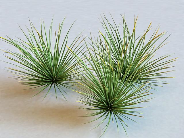 Nature Green Grass 3d model