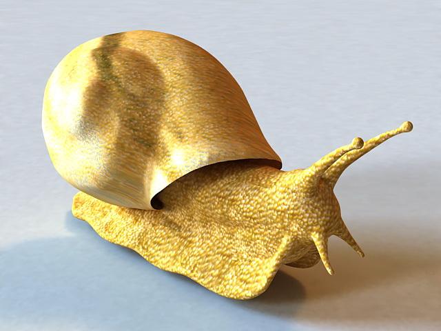 Giant Snail 3d model