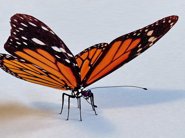 Mariposa Butterfly 3d model