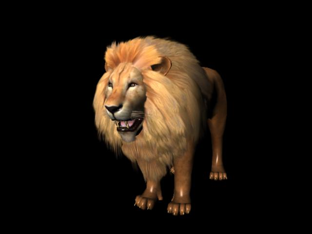 Male African Lion 3d model Maya,Object files free download