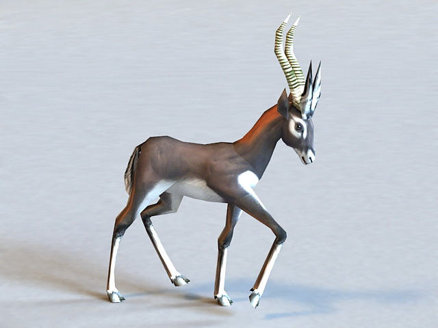Animated Antelope 3d model