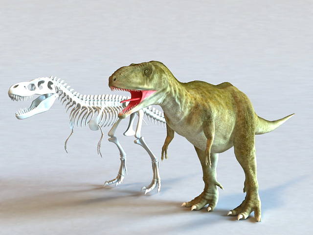 Tyrannosaurus Rex and Skeleton 3d model
