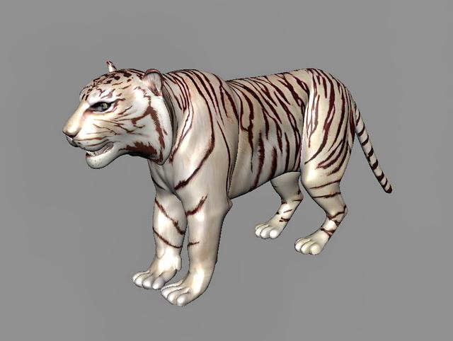 Maltese Tiger 3d model