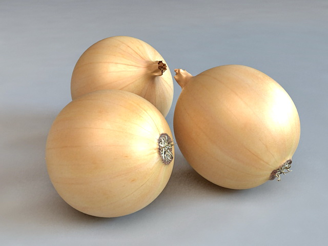Sweet Spanish Onions 3d model