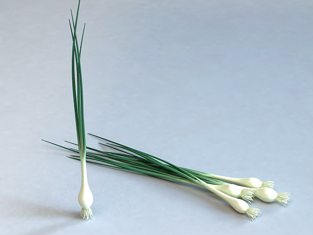 Spring Onion Greens 3d model