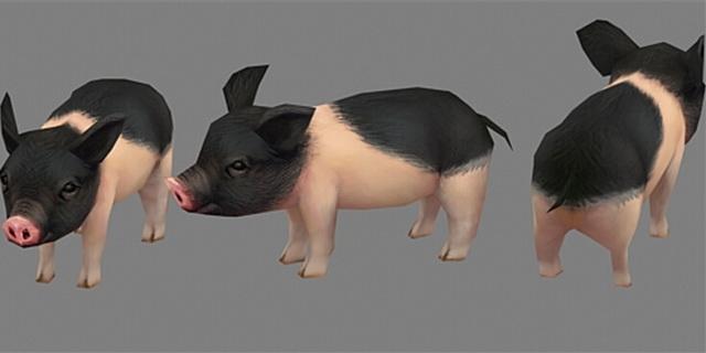 Miniature Pig 3d model
