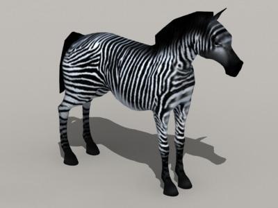 Zebra Wild Horse 3d model