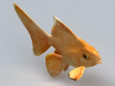 Yellow Goldfish 3d model