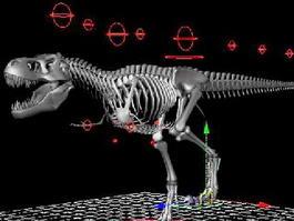Skeletal Tyrannosaurus Rex Rigged 3d model