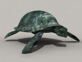 Green Tortoise 3d model