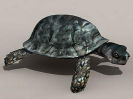 Snapping Turtle 3d model