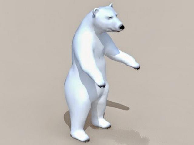 Tundra Animals Polar Bear 3d model