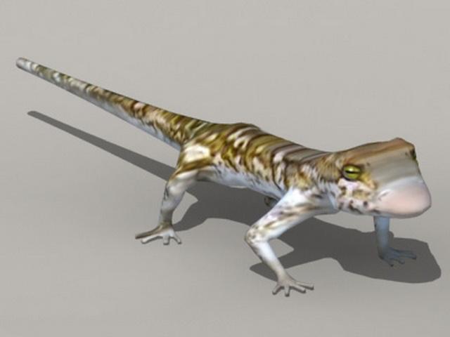 Tropical House Gecko 3d model