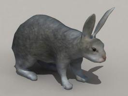 Giant Rabbit 3d model