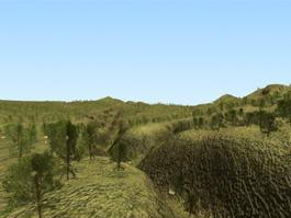 Hill Terrain 3d model