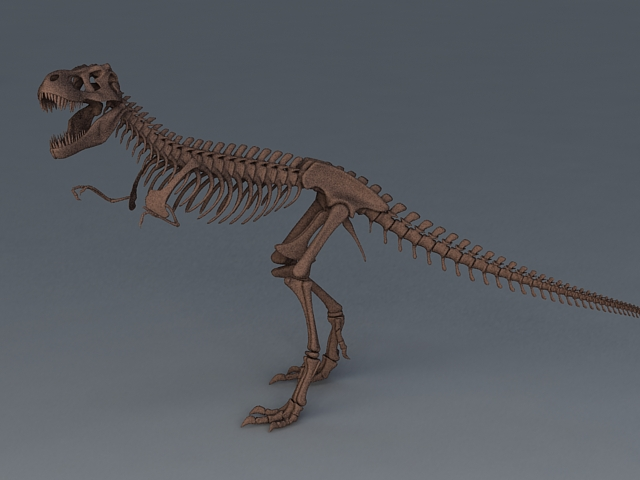 Tyrannosaurus Rex Skeleton 3d model 3ds Max files free download