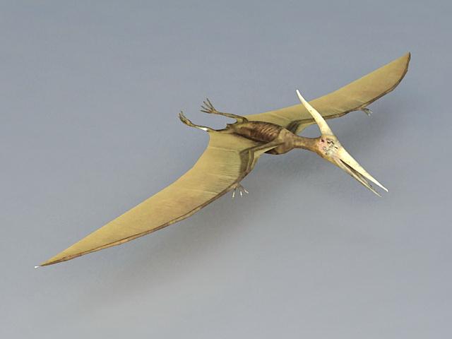 Pterosaur Flying Reptiles Dinosaur 3d model