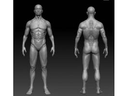 Male Calisthenics Body 3d model