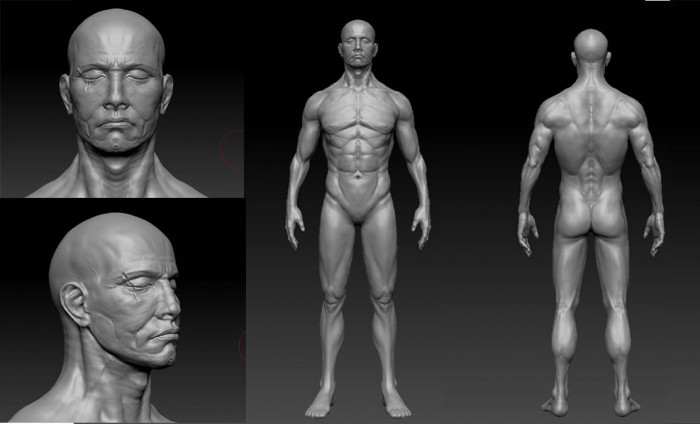 male calisthenics body 3d model zbrush files free download