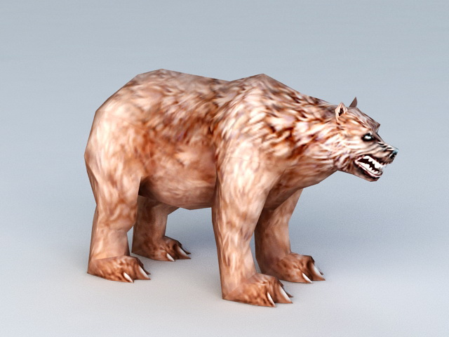 Brown Bear Rigged 3d model