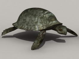 Snapping Tortoise 3d model