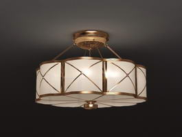 Chinese Style Ceiling Lamp 3d model