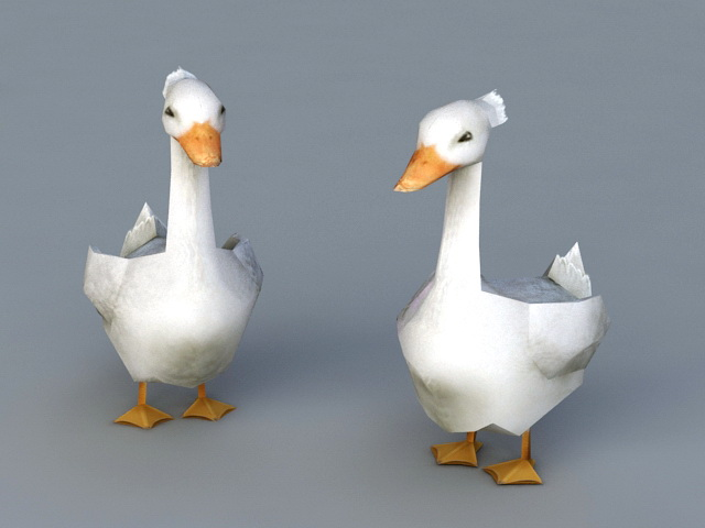 White Ducks 3d model