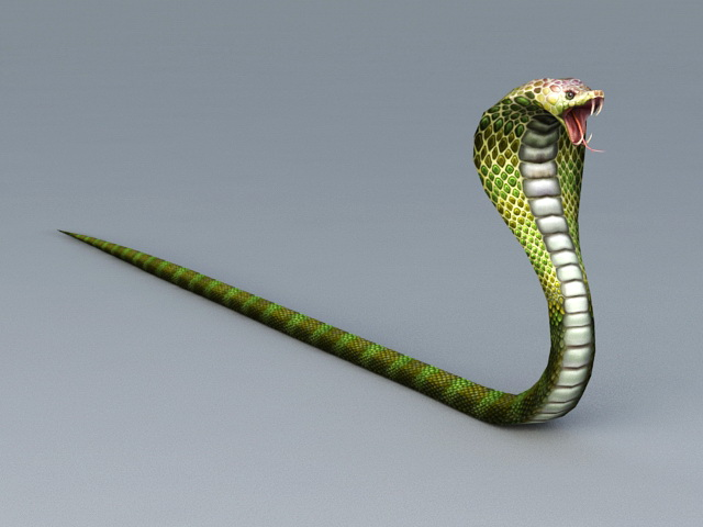 King Cobra Snake 3d Model 3ds Max Files Free Download