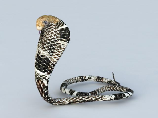 King Cobra Snake 3d model