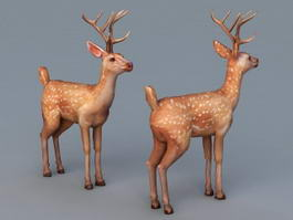 Male Spotted Deer 3d model