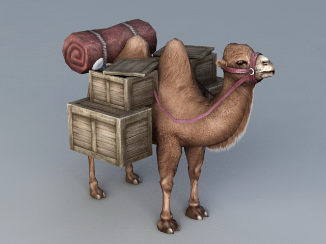 Desert Travel Camel 3d model