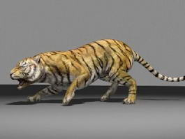 Animal Bengal Tiger 3d model