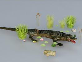 Crocodile in Pond 3d model