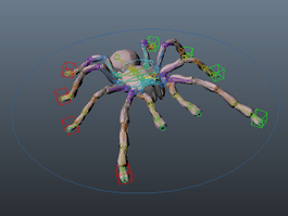 Tarantula Spider Rig 3d model